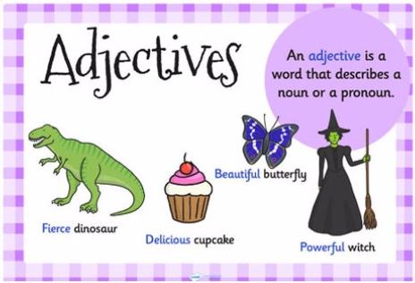 Ngữ pháp cơ bản – Bài 2: Tính từ (Adjectives)