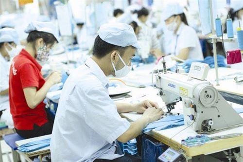 Khoảng 75% lao động trong lĩnh vực dệt may chưa qua đào tạo