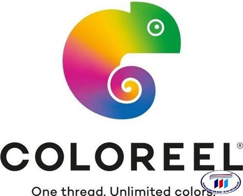 Hãng Coloreel giới thiệu về cách mạng chỉ một cuộn đa màu tại Mỹ