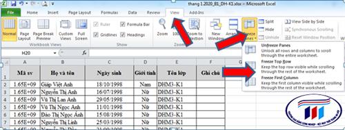 Kỹ năng cố định cột và hàng trong Excel