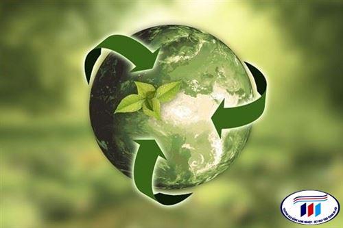 Triển vọng tái chế sợi xenlulo bằng hóa chất